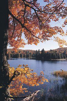 Gatineau Park - Parc de la Gatineau by Canada's Capital - Capitale du Canada Ottawa City, Canadian Things, Destinations, Cool Photos, Amazing Photos, 10 Picture, Parc National, Beautiful Places, Amazing Places