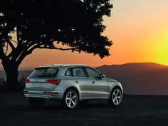 2013 Audi Q5-yes-i like! really cute! :D
