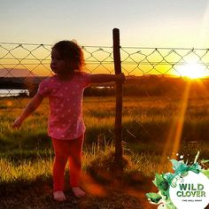 Wild Clover Cottages offers 6 luxury self-catering units each with their own private patio and exquisite views of the wildlife and sensational sunsets over Table Mountain. Self Catering Cottages, Things To Do, Wildlife, Join, Activities, Things To Make
