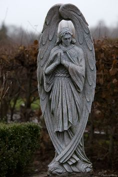 Cemetery male angels wings folded, hands in prayer, cemeteries statues graveyard markers tombstones, Cemetery Angels, Cemetery Statues, Cemetery Art, Angels Among Us, Angels And Demons, Male Angels, Statue Ange, Sculpture Art, Ceramic Art