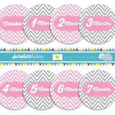 Pink & Gray Chevron Onesie Stickers for Girls by SunshineBabiesCo, $9.99  #pink #gray #onesiestickers