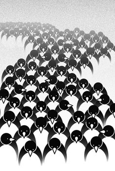 Penguins by Matt Richards Penguin Bird, Penguin Love, Penguin Parade, Penguin Illustration, Graphic Illustration, Tag Art, All About Penguins, Animal Magic, Watercolor Art