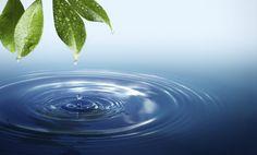 Hodnota pH se pohybuje od 0 do 14, přičemž 7 je neutrální zóna. Látka spH nižším než 7 je kyselá, zatímco ta spH vyšším je alkalická. Voda zvodovodu, kterou pijeme každý den, je plná chloru, antibiotik, hormonů a kovů, které vstupují do našeho systému a oslabují h Když je naše tělo kyselé, může to mít …