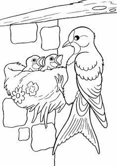 Planse de colorat-PASARI Bird Coloring Pages, Coloring Sheets For Kids, Coloring Pages For Kids, Coloring Books, Bird Drawings, Colorful Drawings, Easy Drawings, Bird Quilt, Animal Sketches