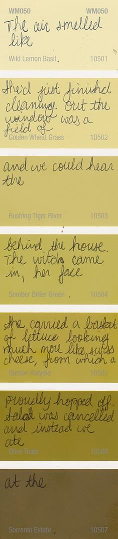 Paint Chip Poetry - use in homeschool too