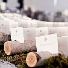 Simple escort cards are set in slits on birch logs resting atop a bed of moss.  http://weddings.theknot.com/Real-Weddings/95017/detailview.aspx?type=3=95017#
