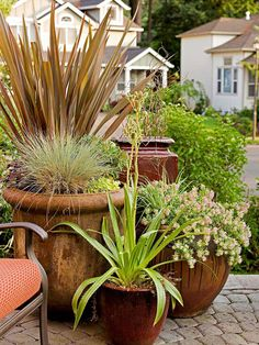Add eye-catching color to your entryway with containers of flowers. More ways to enhance your front entry: http://www.bhg.com/home-improvement/exteriors/curb-appeal/enhance-front-entry/?socsrc=bhgpin081613containerflowers=11