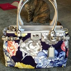Coach Madison Large Floral Maggie Handbag NWOT! Coach Large Handbag in a Beautiful, New Condition. 100% AUTHENTIC! GUARANTEED! This handbag is so beautiful and too adorable it's breaking my heart to see this one go. I already have regrets listing it. This beauty is flawless I only ever carried it once since purchased. Practically new. Comes with a dust bag. If you want more pictures, just say so, I'd be more than happy to provide. Coach Bags Shoulder Bags