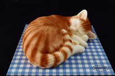 This beautiful Sleeping Cat Cake makes the perfect cake for mothers day gift or any birthday party. This Cake Serves Available in a choice of flavours Birthday Cake For Cat, Birthday Cakes, 10 Birthday, Big House Cats, Personalised Cakes, Fondant Flower Cake, Fondant Cat, Fondant Rose, Realistic Cakes
