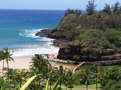 National Tropical Botanical Garden in Kauai.  Want to go back!