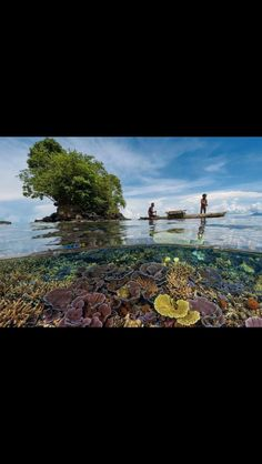 Crystal clear waters of New Papua guinea