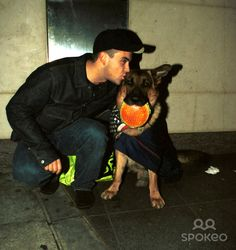 """Celebrity GSD - Robbie Williams gives Oscar the dog a kiss Celebrities photographed with the famous German shepherd Oscar the """"Met Bar"""" dog. During the late 1990s..."""