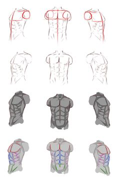 Male Anatomy  by ryky.deviantart.com on #DeviantArt