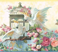 BEAUTIFUL TROPICAL COCKATEIL OUT OF CAGE WITH ROSES Wallpaper Wall bordeR