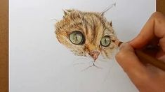 Tutorial - How to draw fur with colored pencils (cat)