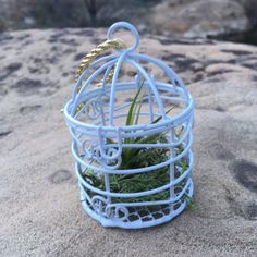 Excited to share the latest addition to my #etsy shop: 4 White Mini Birdcages and Air Plant, Baby Shower, Party Favor, Game Prizes, Wedding, Romance, Valentine, Garden Party, Bridal Shower, Fairy