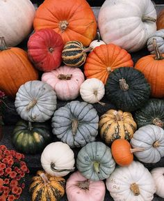 Mess-Free DIY Create one-of-a-kind fall decor and get 10 off your order Upload your fav pumpkin Mess-Free DIY Create one-of-a-kind fall decor and get 10 off your order Upload your fav pumpkin Anja Jones nbsp hellip backgrounds aesthetic fall Autumn Cozy, Autumn Feeling, Autumn Art, Autumn Aesthetic, Cosy Aesthetic, Fall Wallpaper, Pumpkin Wallpaper, Halloween Wallpaper, Happy Fall Y'all