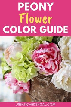 Peony flowers are available in just about every shade of the rainbow. If you love peony flowers, you're sure to find some beautiful options on this list of colorful peonies. #flowers #flowergarden