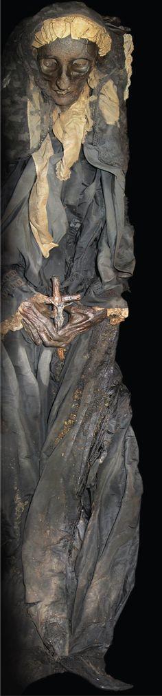 Restos mortais da imperatriz D. Amélia
