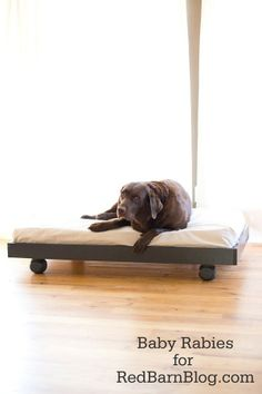 turn a crib mattress into a dog bed, love this upcycle!