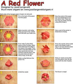 Diagrams for folding a flower in 10 steps.