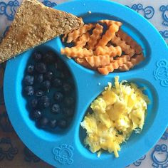 BREAKFAST.  Scrambled eggs with cheese, blueberries, whole wheat toast and sweet potato. I bought the sweet potato already crinkle cut in a bag in the produce section. Super easy, I just steamed it until soft for this breakfast! The sweet potatoes would be a perfect beginner food. . . #blw #babyledweaning #babyfood #toddlerfood #toddlereats #babymealtime #babymealideas #foodforbabies #yum #delish #breakfastofchampions