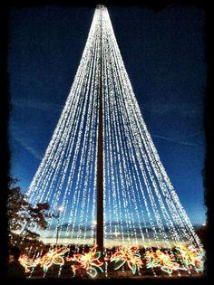 Lights at Christmas
