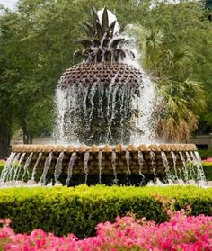 Charleston, SC - the pineapple fountain in Waterfront Park.  The pineapple is a symbol of hospitality in Charleston