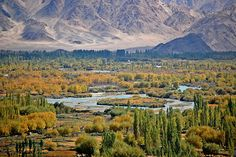 Origins of the mighty Indus river...