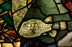 Stained and painted glass; Academy of Natural Sciences; Philadelphia, Pennsylvania, USA.  Photo by Ed Trayes
