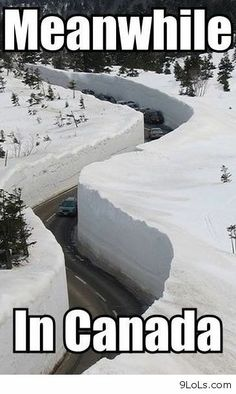 """A photo gallery of the best, greatest, and funniest snow memes of all time. These memes about snow will definitely make you say, """"Dude, Snow Way! Best Memes, Dankest Memes, Funniest Memes, Really Funny, The Funny, Canada Funny, Canada Eh, Canada Jokes, Canada Snow"""