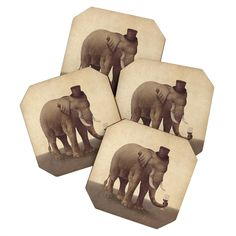 Terry Fan A Fine Vintage Coaster Set | DENY Designs Home Accessories