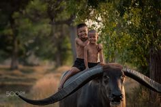 Country boy sitting on buffalo, - Country boy sitting on buffalo,The bond between children and buffalo in Asia.