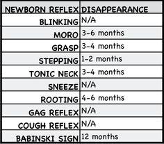 Newborn Reflexes