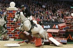 Austria's Markus Saurugg riding his horse What Ever hits the wall that has a height of metres during the Christmas Puissance at the Horse of the Year show in London Picture: AP Photo/Alastair Grant Photo Humour, Western Horse Tack, Western Saddles, Cross Country Jumps, Show Jumping Horses, Photo Fails, Equestrian Style, Equestrian Problems, London Pictures