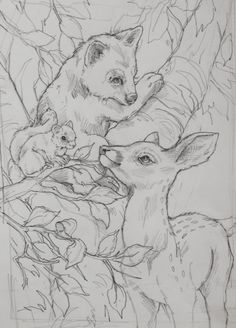 Drawing sketch of fawn, squirrel and  a bear, I think...