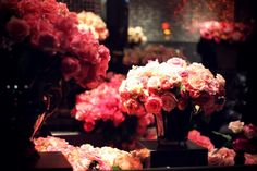 roses at the Hotel Costes floral shop. Amazing Flowers, Beautiful Roses, Relaxing Images, Hotel Costes, Rose Shop, Luxury Flowers, Floral Crown, Flower Designs, Flower Power