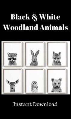 Woodland nursery decor, Black and white nursery art, PRINTABLE art, Baby animal prints, Woodland animals, Nursery wall art, Nursery prints #afflink