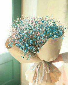 Instagram post by Larisa • Mar 10, 2019 at 6:31am UTC Flowers Nature, My Flower, Flower Power, Wild Flowers, Beautiful Flowers, Blue Flower Arrangements, Luxury Flowers, Flower Aesthetic, Planting Flowers