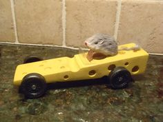 cheese mouse trap car for AWANA grand prix