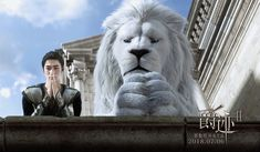 DramaPanda: L. Drama Film, Drama Movies, Lorde, Character Inspiration, Character Art, House Of Flying Daggers, Signo Libra, Memoirs Of A Geisha, Jackson Yi
