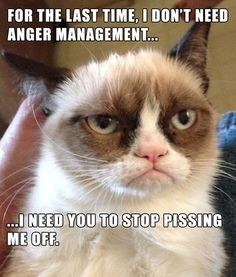 For the last time. I don't need anger management...I NEED YOU TO STOP PISSING ME OFF