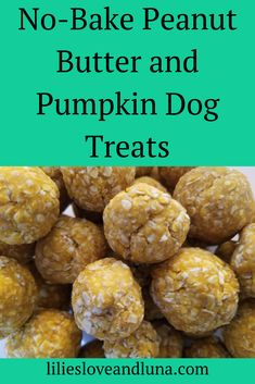 Easy, no-bake pumpkin and peanut butter dog treats. dog treats peanut butter Pumpkin and Peanut Butter Dog Treats No Bake Dog Treats, Peanut Butter Dog Treats, Puppy Treats, Diy Dog Treats, Healthy Dog Treats, Soft Dog Treats, Peanut Butter Dog Biscuits, Sweet Potato Dog Treats, Frozen Dog Treats
