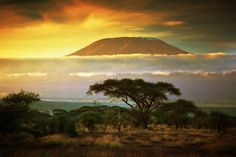 Spectacular view of Mount Kilimanjaro from Amboseli in Kenya, Africa Tanzania, Monte Kilimanjaro, Places To Travel, Places To See, Places Around The World, Around The Worlds, Beautiful World, Beautiful Places, Les Seychelles