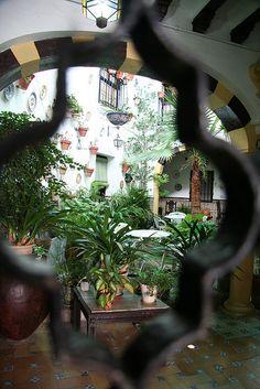 Peeking through the wrought iron gate to see the patio in Cordoba, Spain.