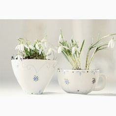 Spring in a cup! Divine snowbells in very pretty blue and white china. Image via @homefocuss_sklep_redecor.pl #myendlessinspiration