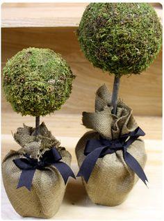 DIY Moss Topiary super fáciles de hacer...