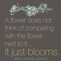 Flowers Do Not Compete, They Bloom - ....and Spiritually Speaking