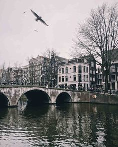 "These Instagrams Are the Epitome of #HoneymoonGoals | Martha Stewart Weddings - Amsterdamn, Netherlands: ""When you're staying in Amsterdam proper, make sure to rent bikes and explore side streets along the canals. If you're looking to do a day trip outside the city, head to Gouda to explore its beautiful town square. During the spring and summer months, there's also a market dedicated solely to—I'm sure you can guess—cheese!"" —James Relf Dyer of Beautiful Destinations Tagore, Kawasan Falls, Romantic Honeymoon Destinations, Amsterdam Netherlands, Paradis, Adventure Is Out There, Day Trip, Travel Photos, Sky"