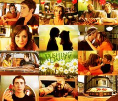 Pushing Daisies. Arrested Development is coming back, so let's get on this one, internet. - PRECISELY WHAT I'VE BEEN SAYING!